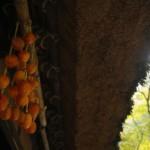 食べたら癖になるおいしい干し柿!! 簡単な作り方とは?