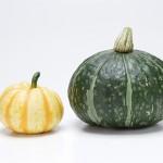 冬至のかぼちゃとは?おいしいだけではない食べる理由を紹介!!