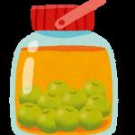 冷凍梅を使って梅ジュースを作る良さとは?作り方も紹介!!