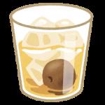 ウイスキーで美味しい梅酒が作れる?!作り方を紹介!!