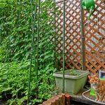 庭のガーデンフェンスを手作りしたい方必見!!作り方を紹介!!