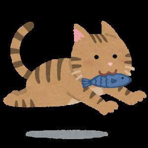 魚を加えた猫