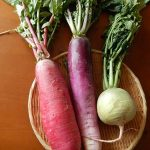 紫大根の漬物はどう作るの?作り方と保存方法や期間を紹介!!