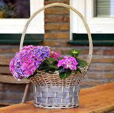 お花をハンキングで飾る